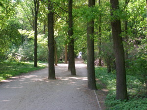 An avenue in the Berliner Tiergarten. Photo HvdE, May 2012.